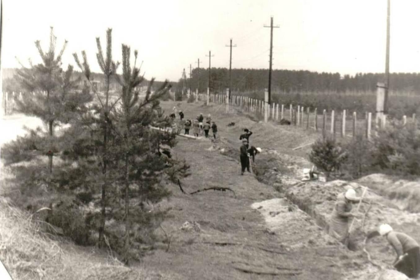 Перекладка водопровода, 1950-е