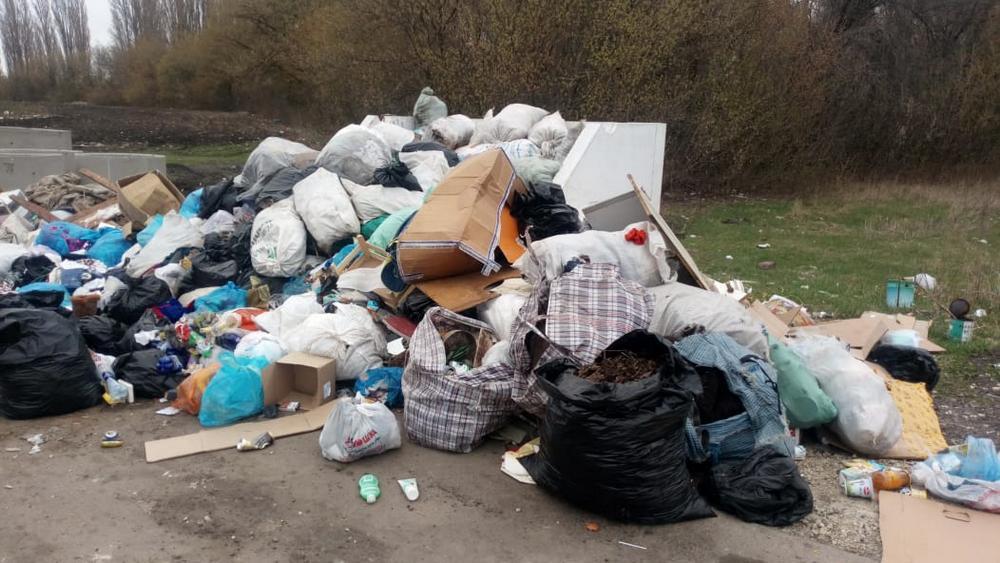 Из-за мусора не видно самих контейнеров
