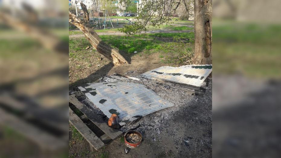 Жители подозревают, что поджог устроили догхантеры