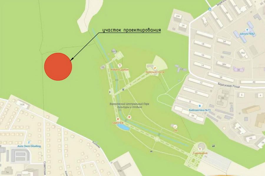 В Центральном парке Воронежа сделают спортплощадку