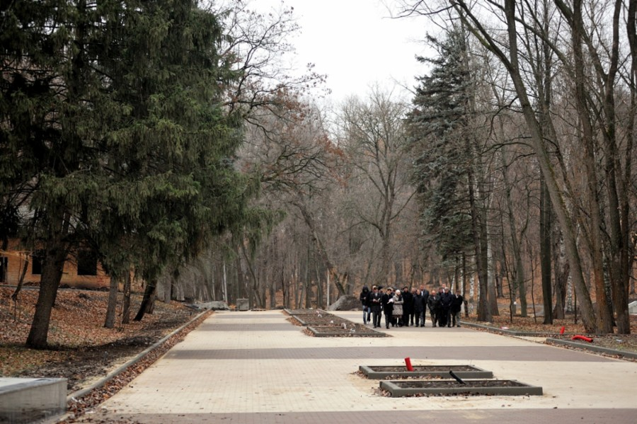 Картинки парка в россоши зимой