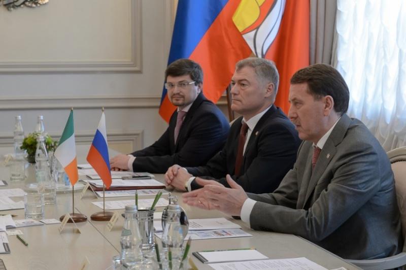 ВВоронежской области откроют российско-ирландский центр повыращиванию поросят