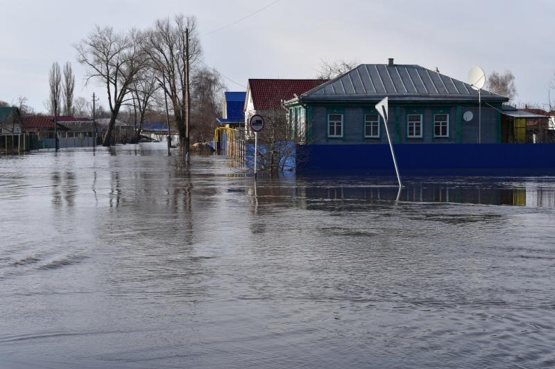 Воронеж г калач дом престарелых пансионат для пожилых надежда екатеринбург