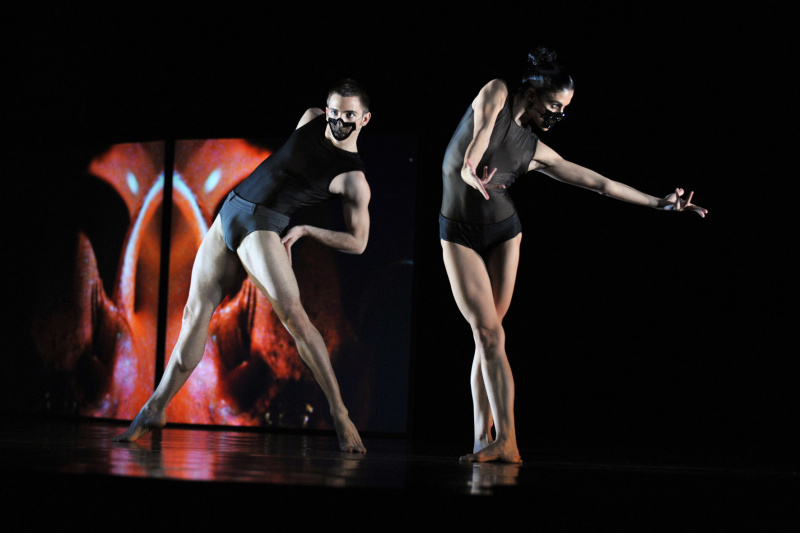 Увидеть авангардную танцевальную постановку  .jpg