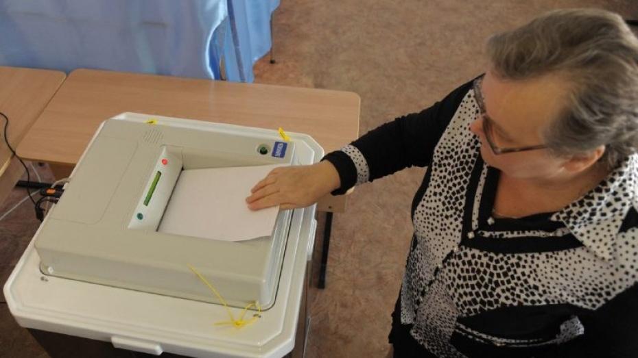 Воронежский облизбирком допустил до выборов еще 4 партии