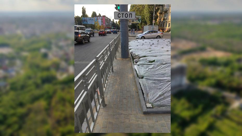 В Воронеже нашли абсурдный тротуар