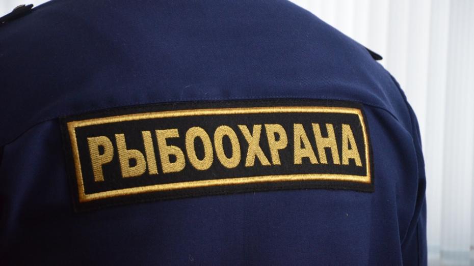 Павловских рыбаков предупредили о запрете вылова судака