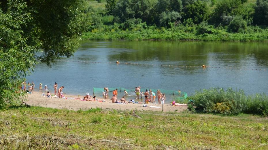 В Семилуках добровольцы очистят берег Дона от мусора