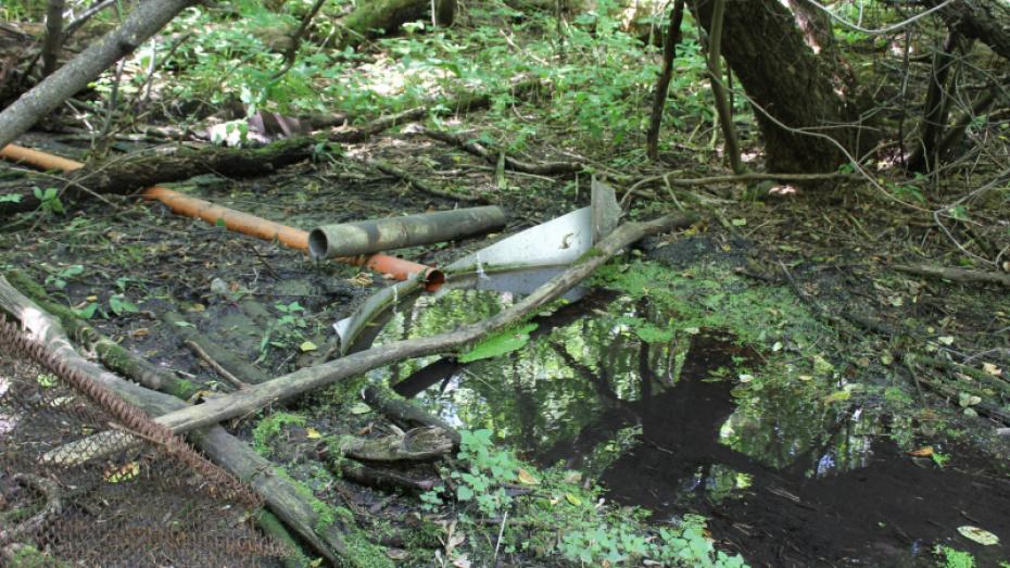 Русло реки под Воронежем забили строительным мусором, чтобы запитать пруд