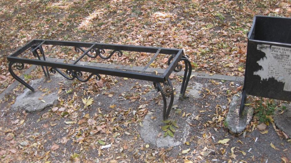 В рамонском поселке ВНИИСС хулиганы разгромили парк