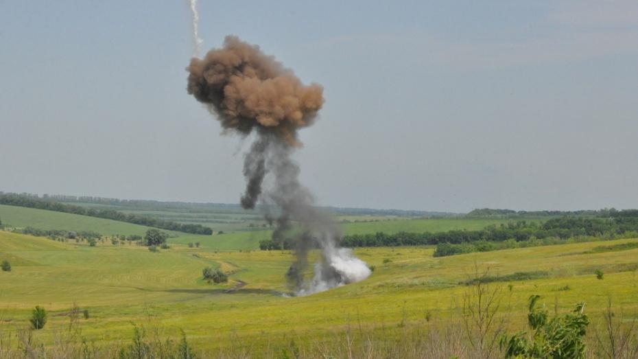 В Репьевском районе спасатели подорвали полторы сотни боеприпасов