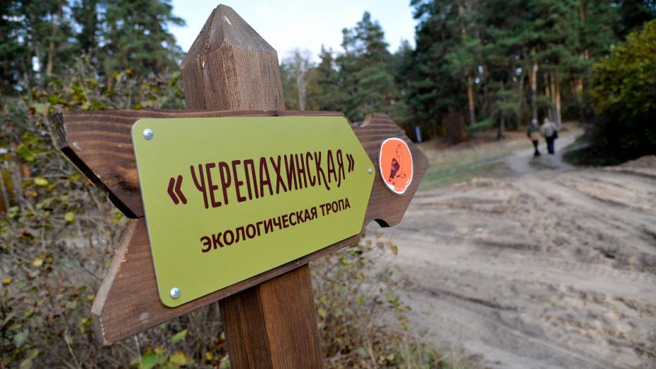 Воронежский заповедник продлил время работы экскурсионных объектов на час