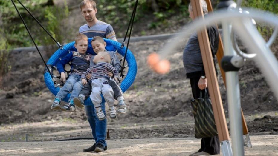 В Воронежском центральном парке появились детские площадки