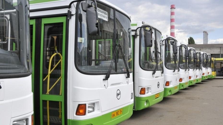 Первые лица Воронежской области поздравили водителей с профессиональным праздником
