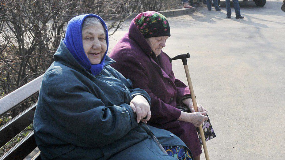 Частная компания предложила Воронежской области проект интерната для пожилых