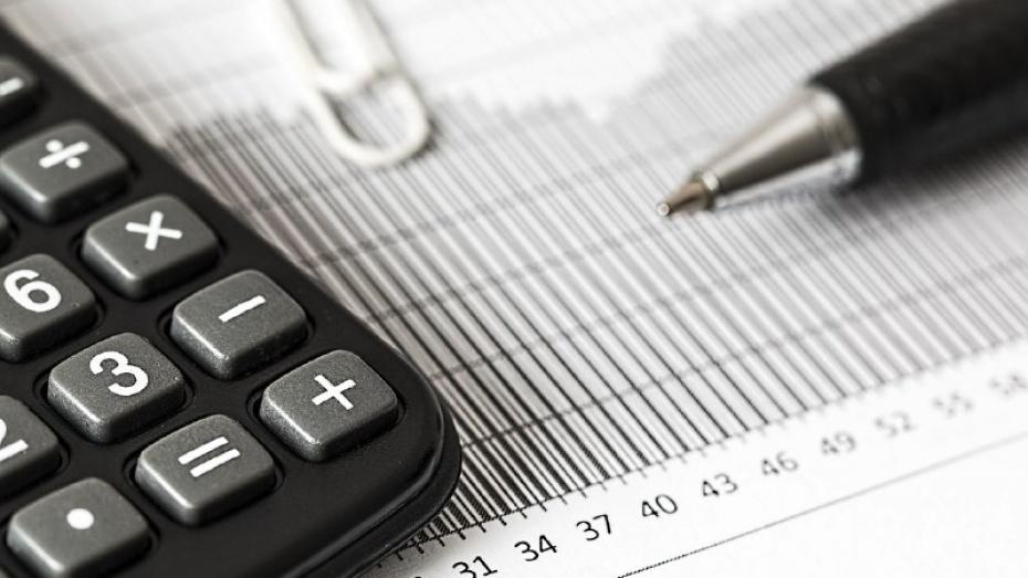 ВВоронежской области глава налоговой инспеции уволилась после возбуждения уголовного дела