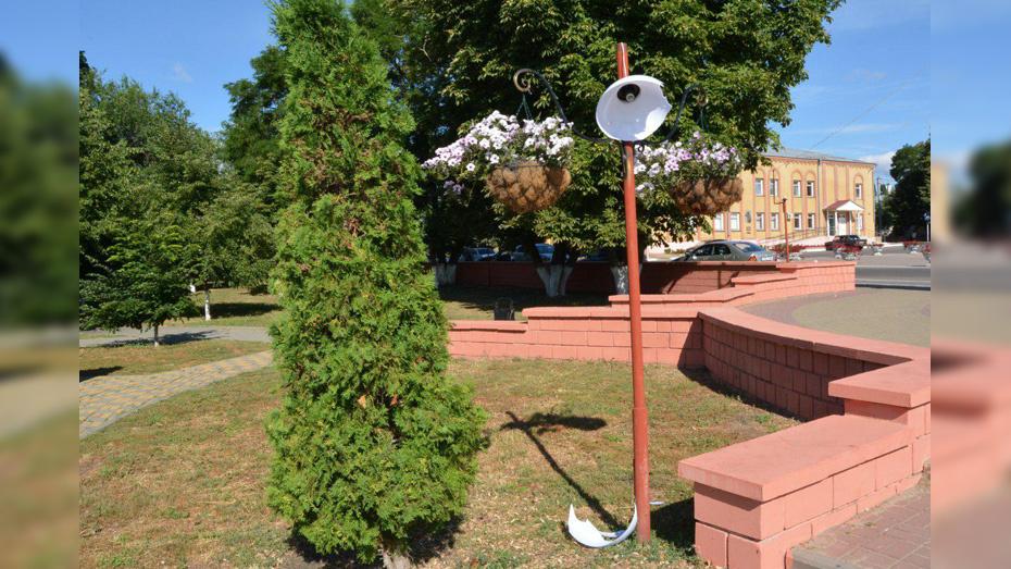 В Богучаре неизвестные отломали и разбили противоударные плафоны на фонарях в парке