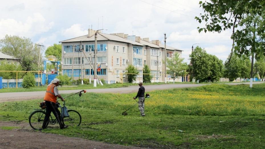 На улицах Таловой коммунальщики выкосят сорную растительность