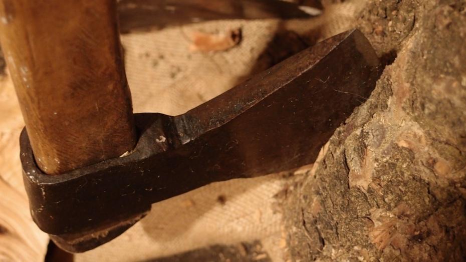 В каменском селе Татарино мать убила топором 35-летнего сына