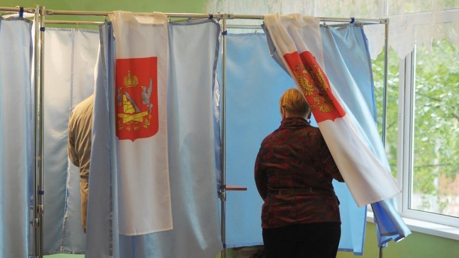 Воронежский облизбирком отказал в регистрации «Родине» и «Коммунистам России»