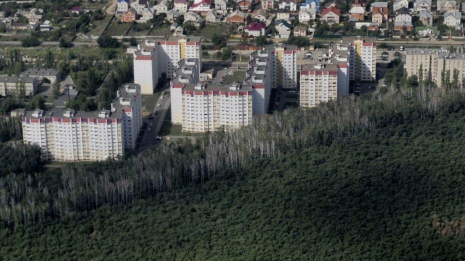 Под Воронежем запустили голосование об изменении статуса Новой Усмани и Отрадного