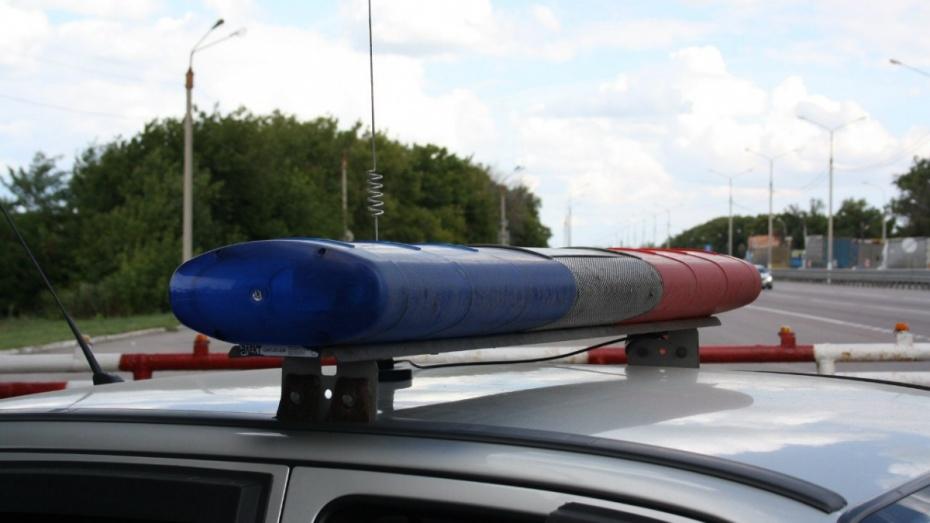 В Воронежской области пьяный водитель напал на полицейского