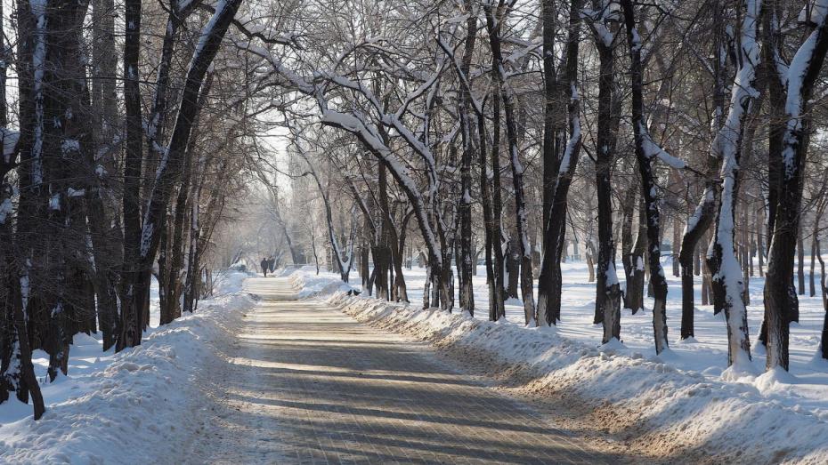В Воронеже нашли пропавшую 10-летнюю девочку