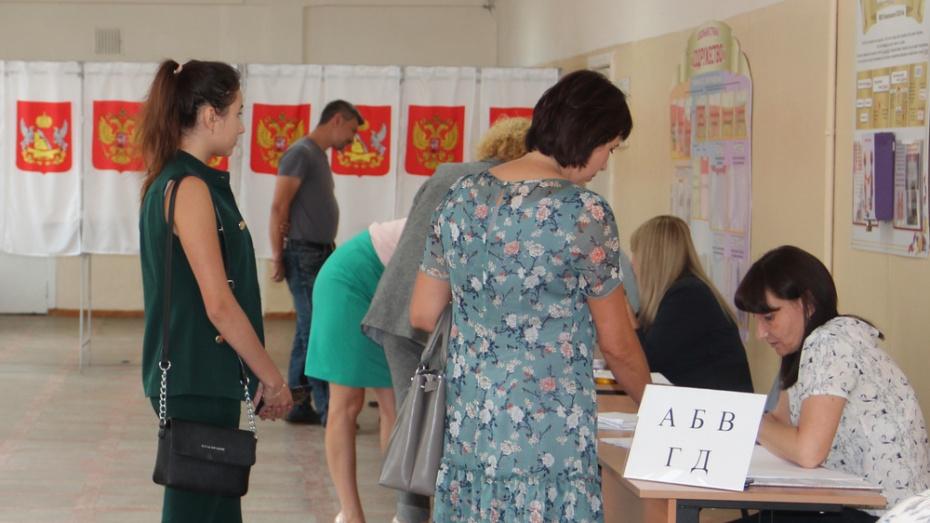 В Новоусманском районе 19 депутатов представят райсовет