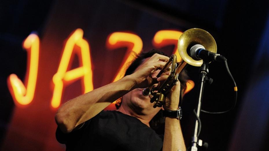 Музыканты из12 стран выступят нафестивале «Джазовая провинция» вВоронеже