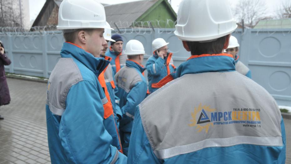 Власти предложат «Воронежскую горэлектросеть» акционерному обществу «МРСК Центра»