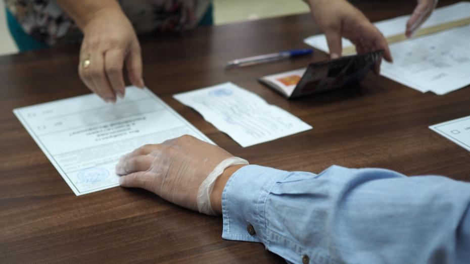 В Воронежской области проголосовали 39,87% избирателей
