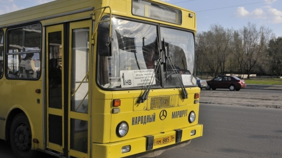 Воронежцев просят рассказать всю правду о «Народном маршруте»