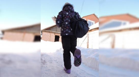 В Кантемировском районе почтальонам выдали ледоходы