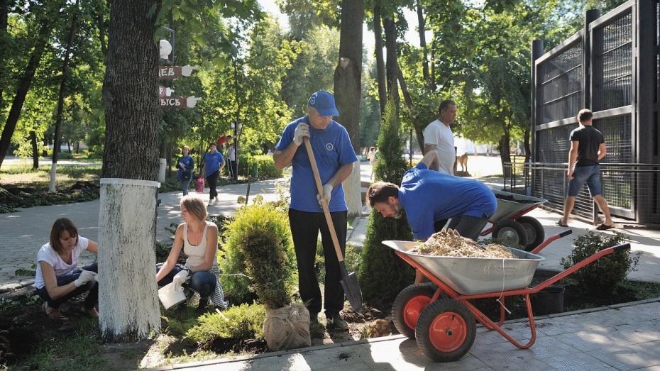 ВВоронежской области вэкосубботнике приняли участие 128 тыс. человек