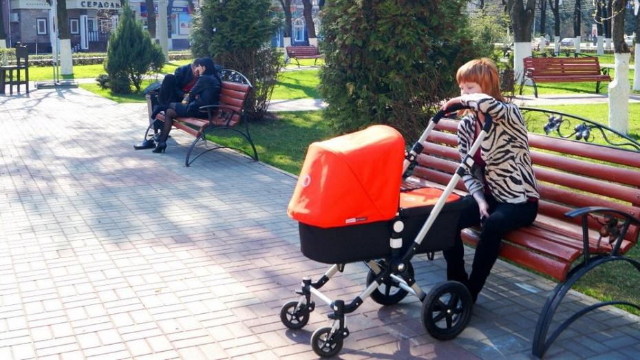 Воронежская облдума разрешила тратить региональный маткапитал на ипотеку