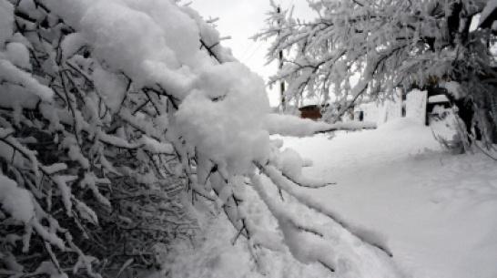 Выходные в Воронеже будут морозными