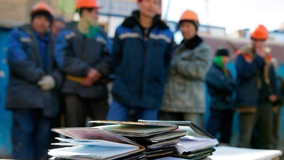 В Воронеже 2 компании незаконно «продавали» труд мигрантов