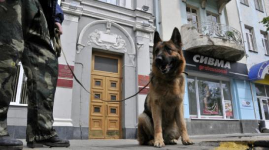 В Воронеже 3 ТЦ и 2 школы «заминировали» с зарегистрированных в Германии IP-адресов