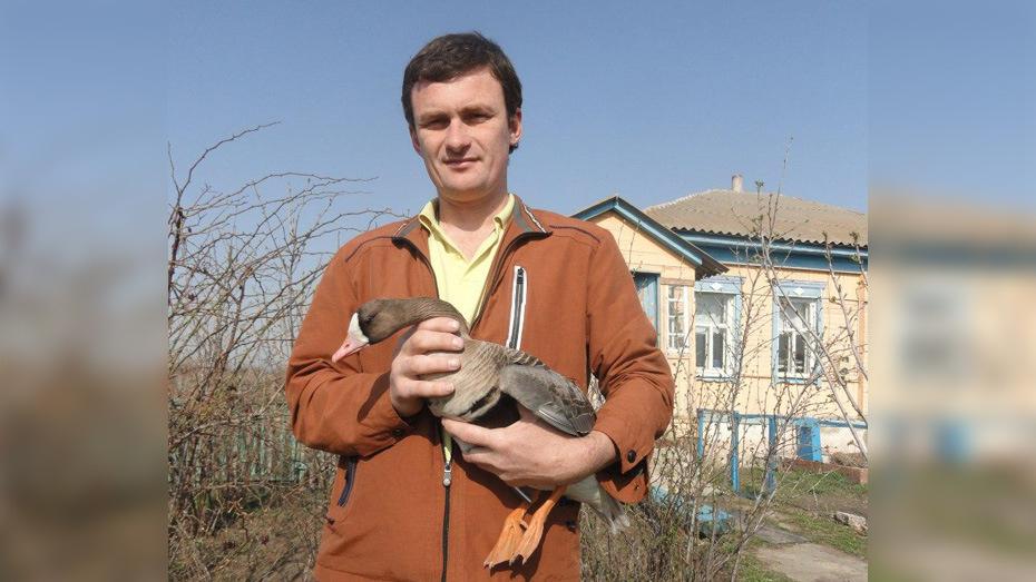 Житель поворинского села Самодуровка спас подстреленного охотниками гуся