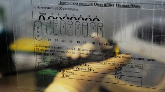 В Воронежской области вора нашли спустя 5 лет по анализу ДНК