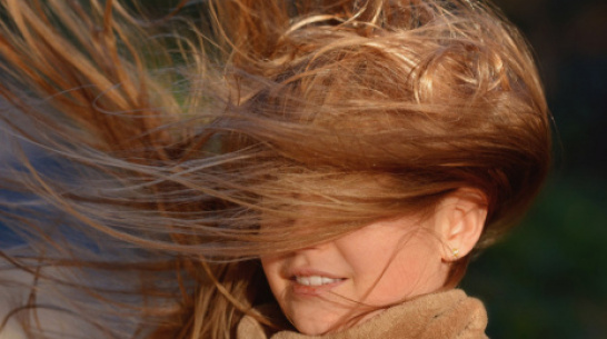 Синоптики предупредили об усилении ветра в Воронежской области