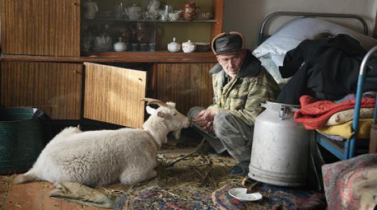 Заброшенные хутора: как пустеют воронежские деревни. Коломенский