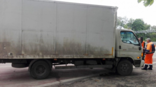 Под Воронежем грузовой рефрижератор насмерть сбил 71-летнего пешехода