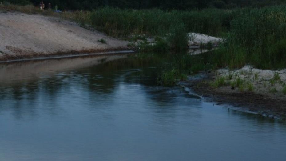 В Воронеже за выходные утонули 2 мужчин и женщина