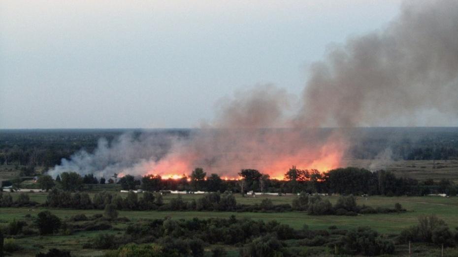 В Лисках пожарные предотвратили возгорание электроподстанции