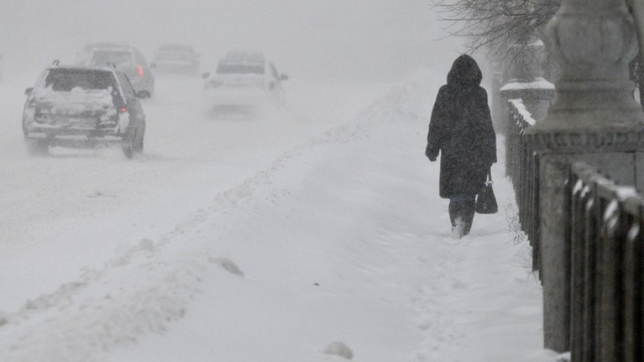 Спасатели актуализировали предупреждение о сильном ветре в Воронежской области