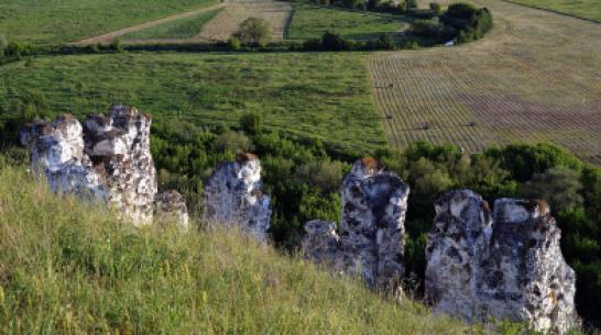Воронежский заповедник «Дивногорье» попал в предварительный список ЮНЕСКО
