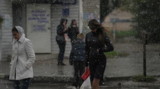 Воронежские синоптики объявили штормовое предупреждение из-за метели