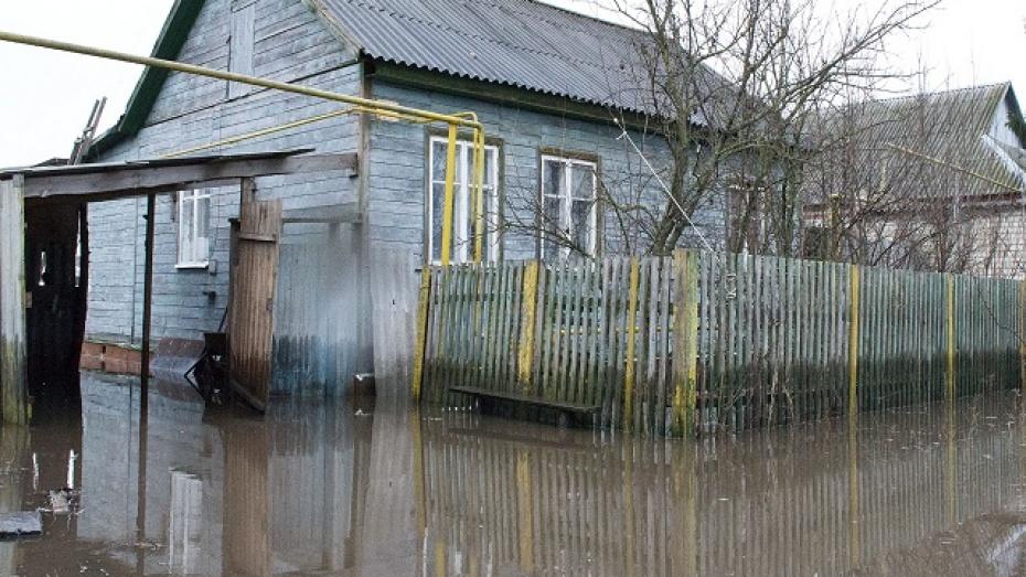 В Давыдовке Лискинского района в зоне подтопления оказалось несколько десятков домов