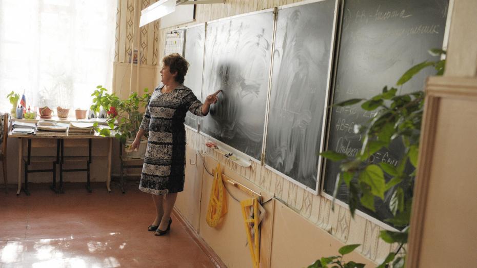 Мэрия: воронежским школам не хватает учителей начальных классов